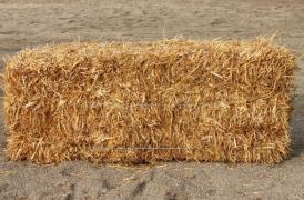 Shipping wheat Straw in bales Zaporozhye